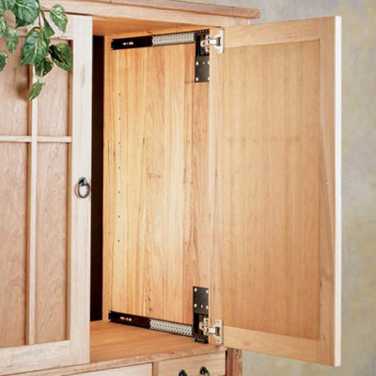 Hafele Pocket Door System