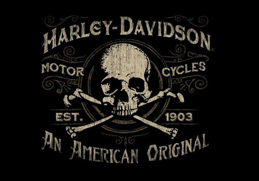 Jogo Americano Harley Skull (2 peças) – Rvalentim