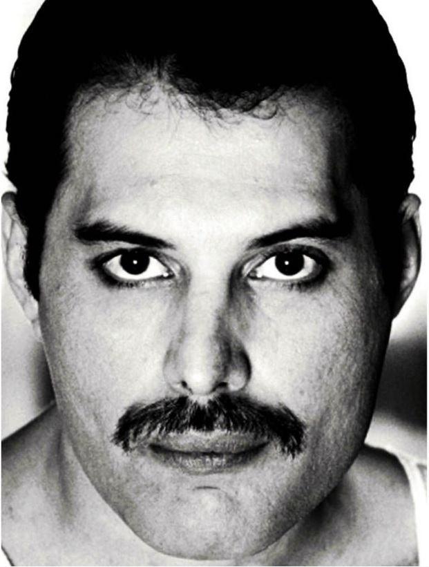 Tela Rocker Freddie – Rvalentim