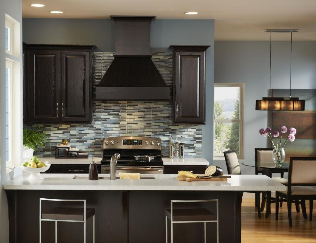 Color Ideas For Kitchen With Dark Cabinets