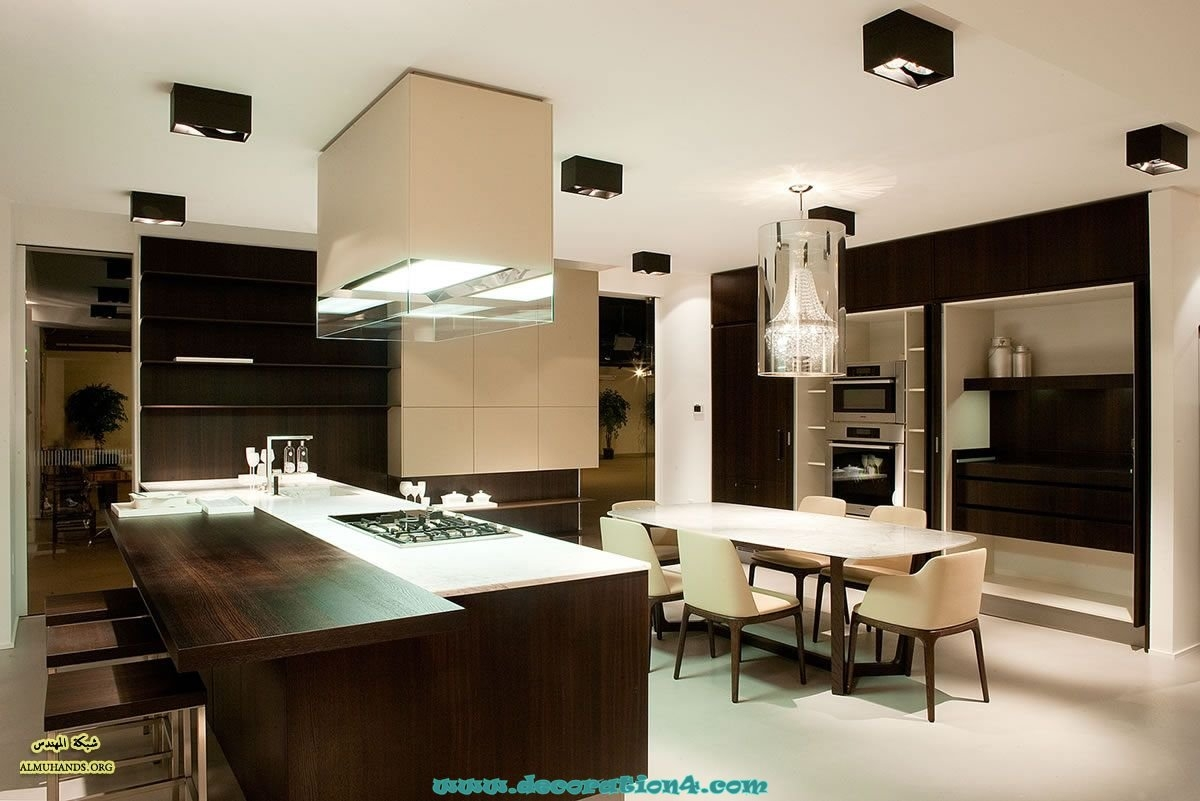 Modern Kitchen Cabinet Designs 2013