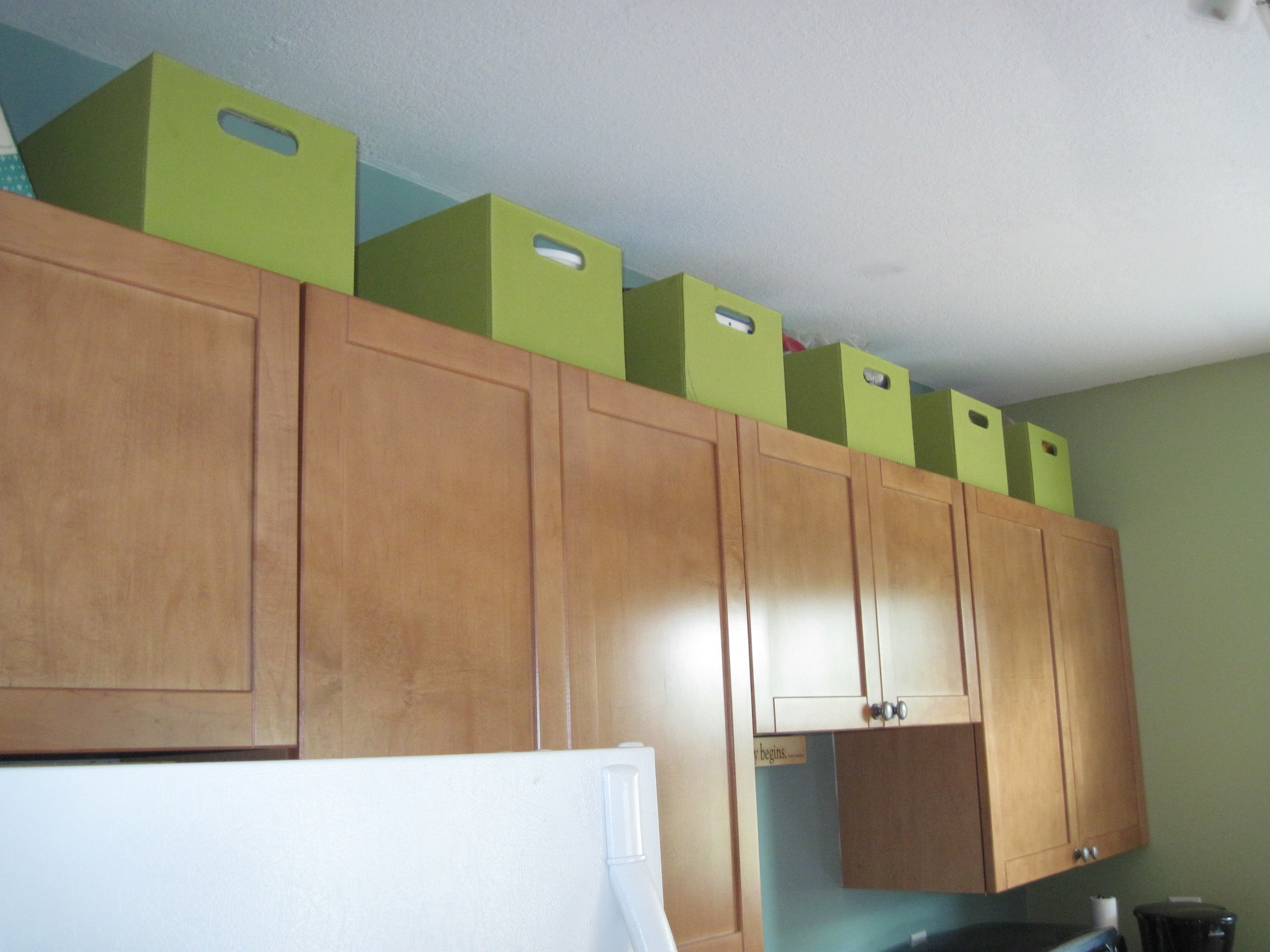 Storage Boxes For Kitchen Cabinets
