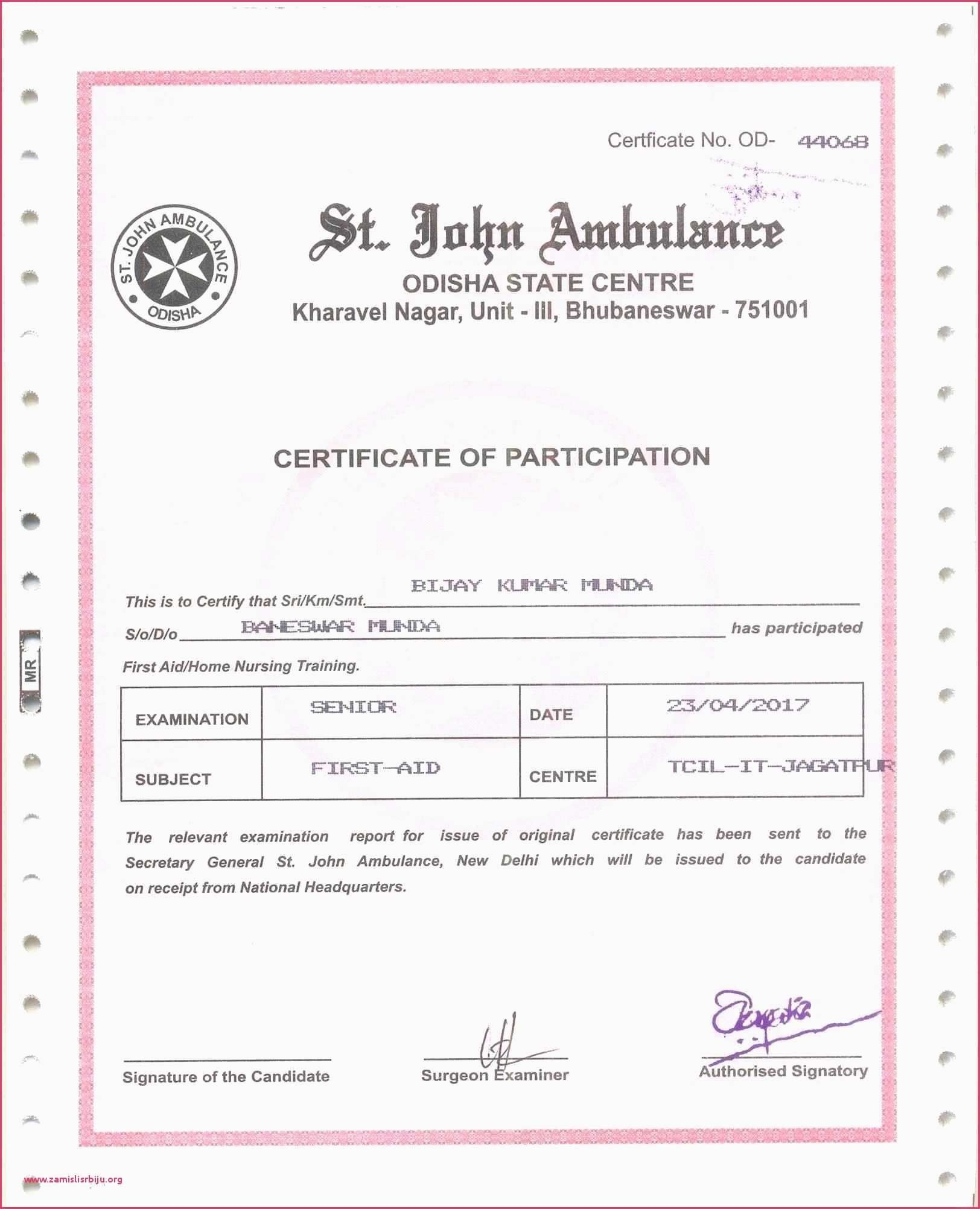 picture regarding Printable Certificates of Participation referred to as Certification Of Participation Pattern Words and phrases Stylish 30 No cost