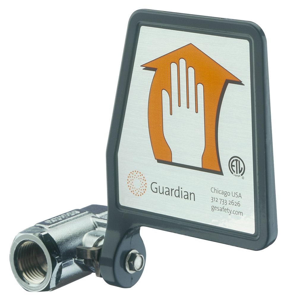 Ideas, guardian g1814p eyewash station wall mounted plastic bowl with proportions 1000 x 1000  .