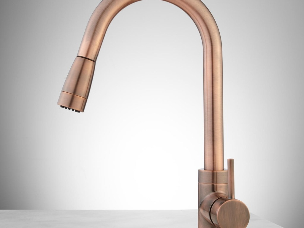Ideas, kitchen faucet awesome single hole kitchen faucet with pull out intended for proportions 1024 x 768  .