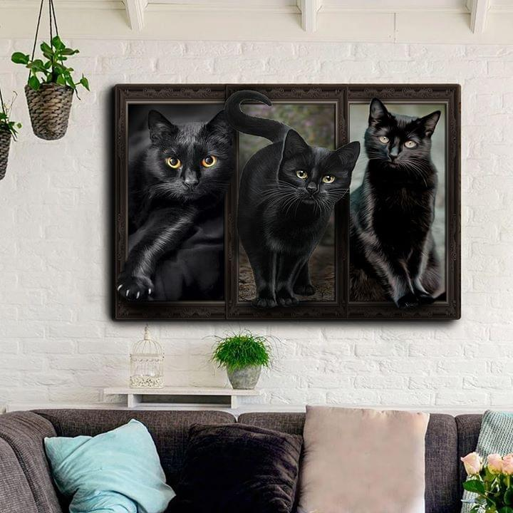 Beautiful Black Cat Poses For Cat Lover Poster poster canvas