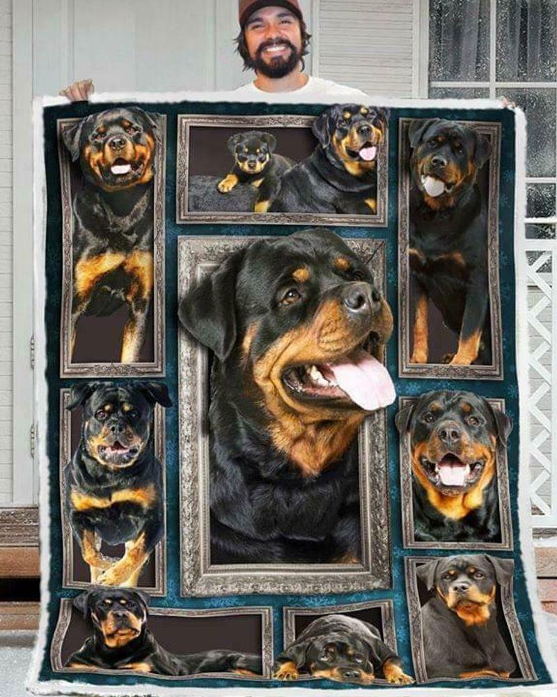 Rottweiler 3d Picture Frames 60-102 Polycotton Quilt 3 Sizes