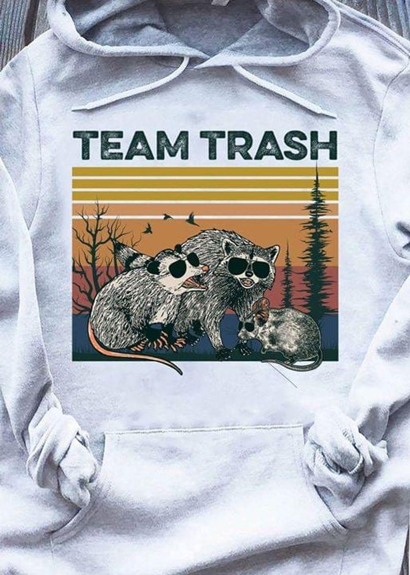 Raccoon Team Trash Vintage Hoodie S-5xl Mens And Women Clothing