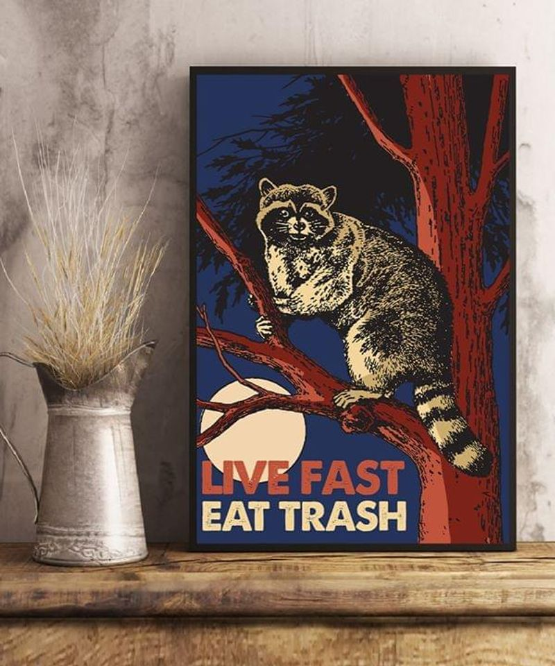 Raccoon Live Fast Eat Trash Poster No Frame/ Framed Canvas Wall Decor