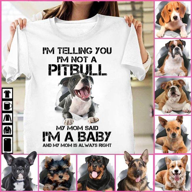 Im Not A Pibull My Mom Said Im A Baby T Shirt S-6xl Mens And Women Clothing