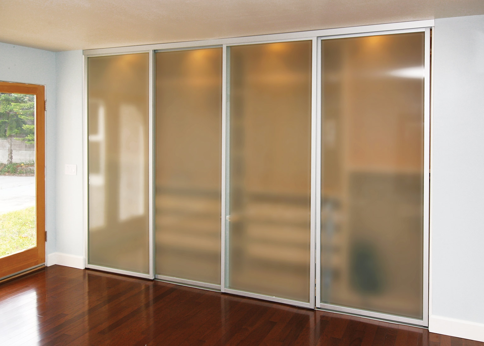 Closets Doors With Frosted Glass