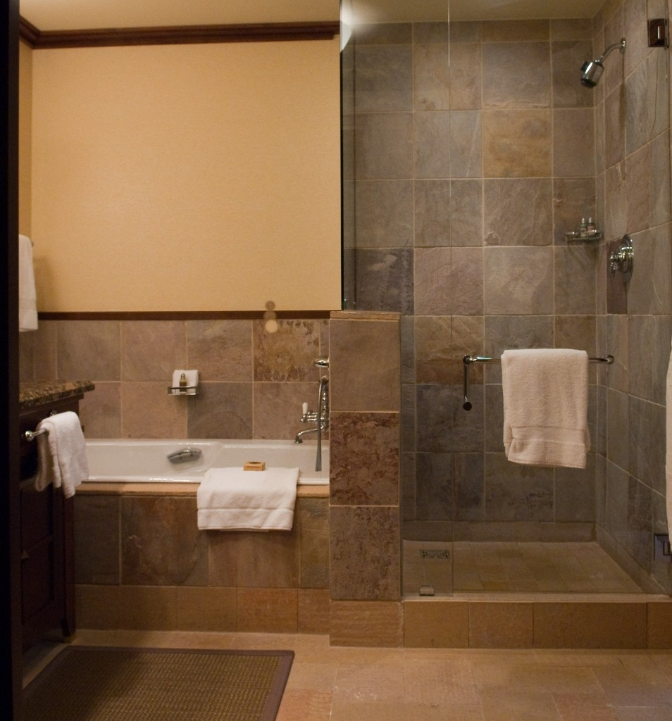 Small Bathroom Showers Without Doors