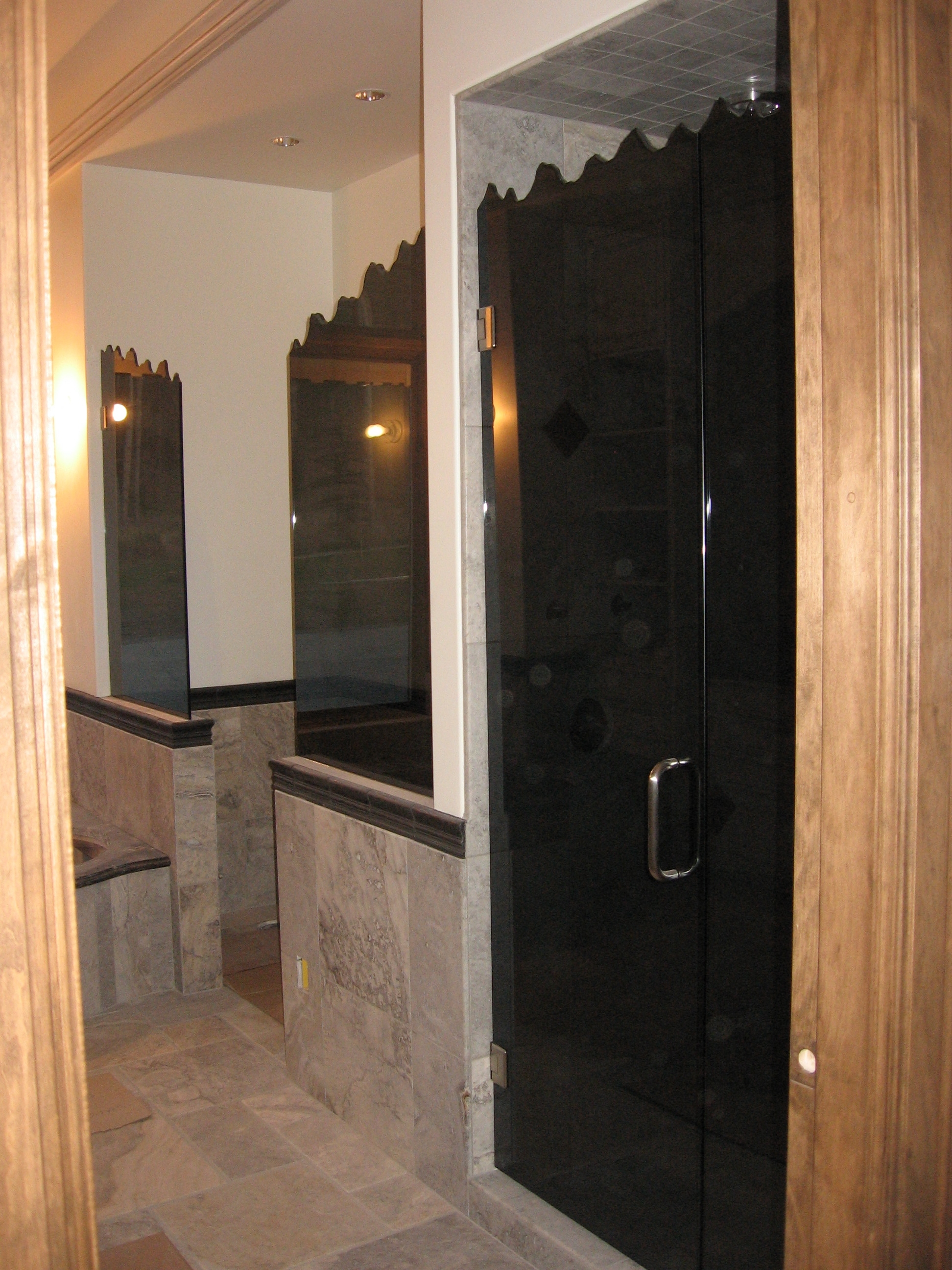 Tinted Glass Shower Doors