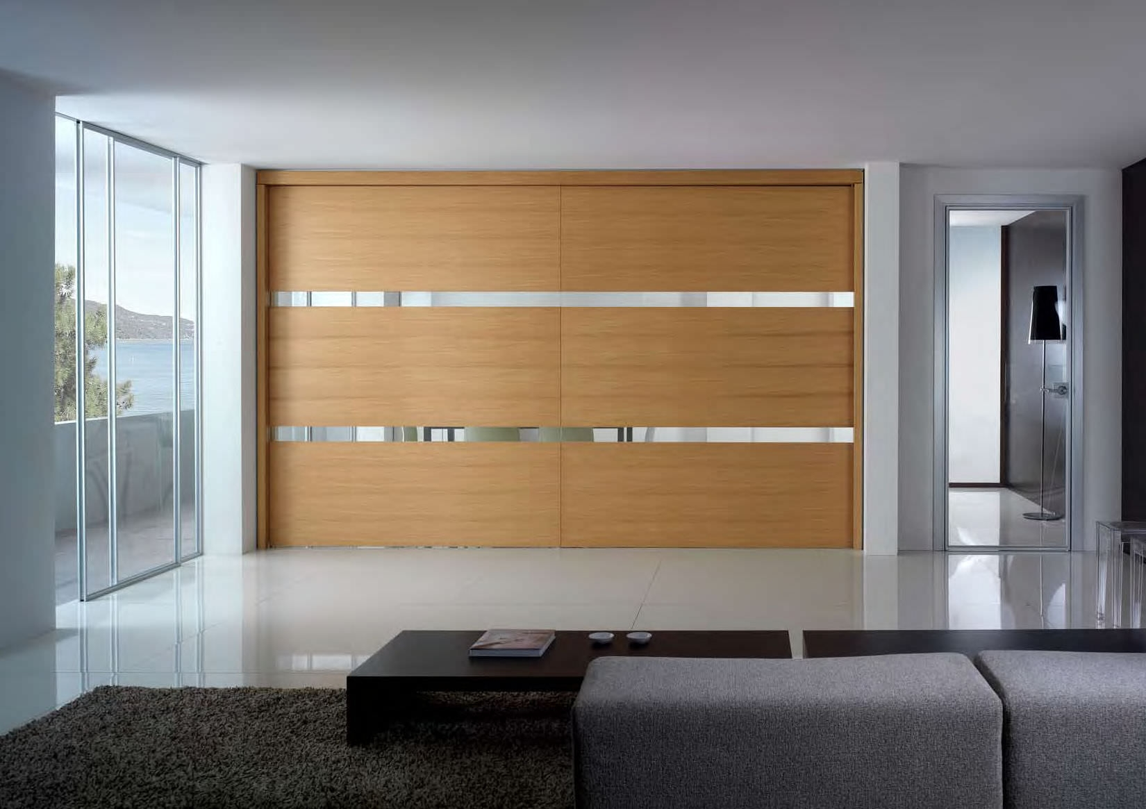 Contemporary Closet Doors Sliding