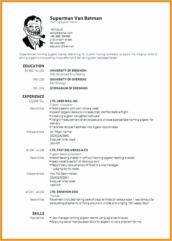 Lebenslauf Vorlage Download Kostenlos Pdf Cool Free Apa Format Template Best Cv Education Awesome