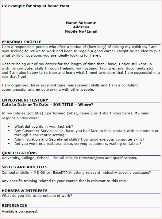 Cv Example Personal Profile Best Of Hobbies In Resume Examples Samples With New Sample