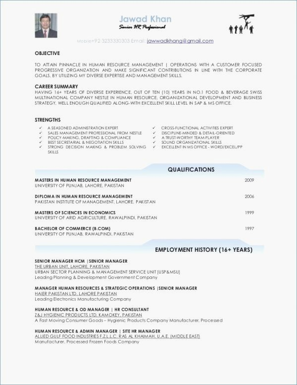 Cv Format In Pakistan Business Card And Resume