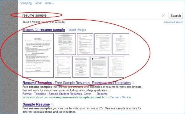 Cv Format Word Document