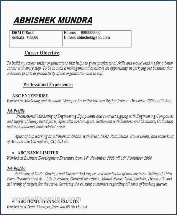 Cv Professional Profile Examples Schon Example For Job