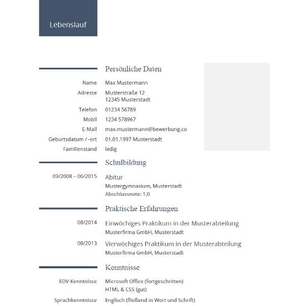 Lebenslauf Vorlage Schweiz Xing