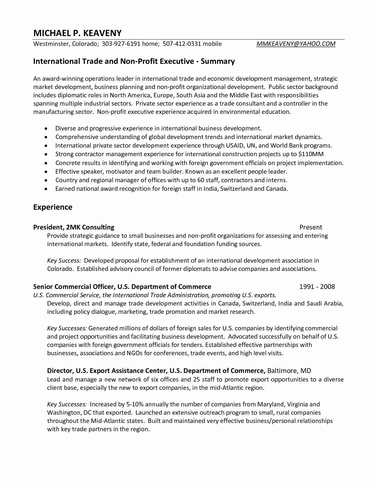 Student Cv Summary Sample Luxus Resume Business Economics New American Of 45