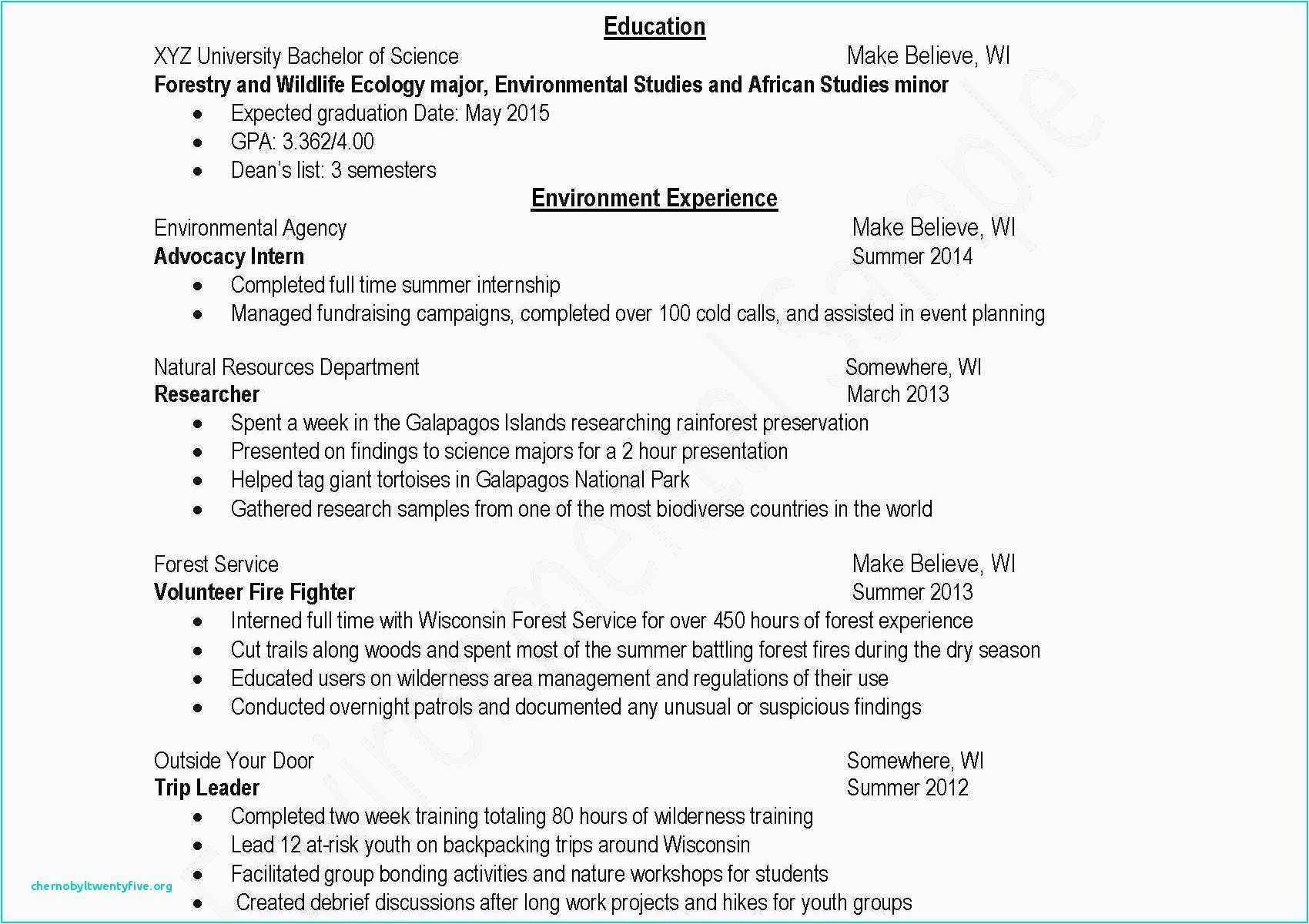 Undergraduate Student Curriculum Vitae Sample Philippines Elegant