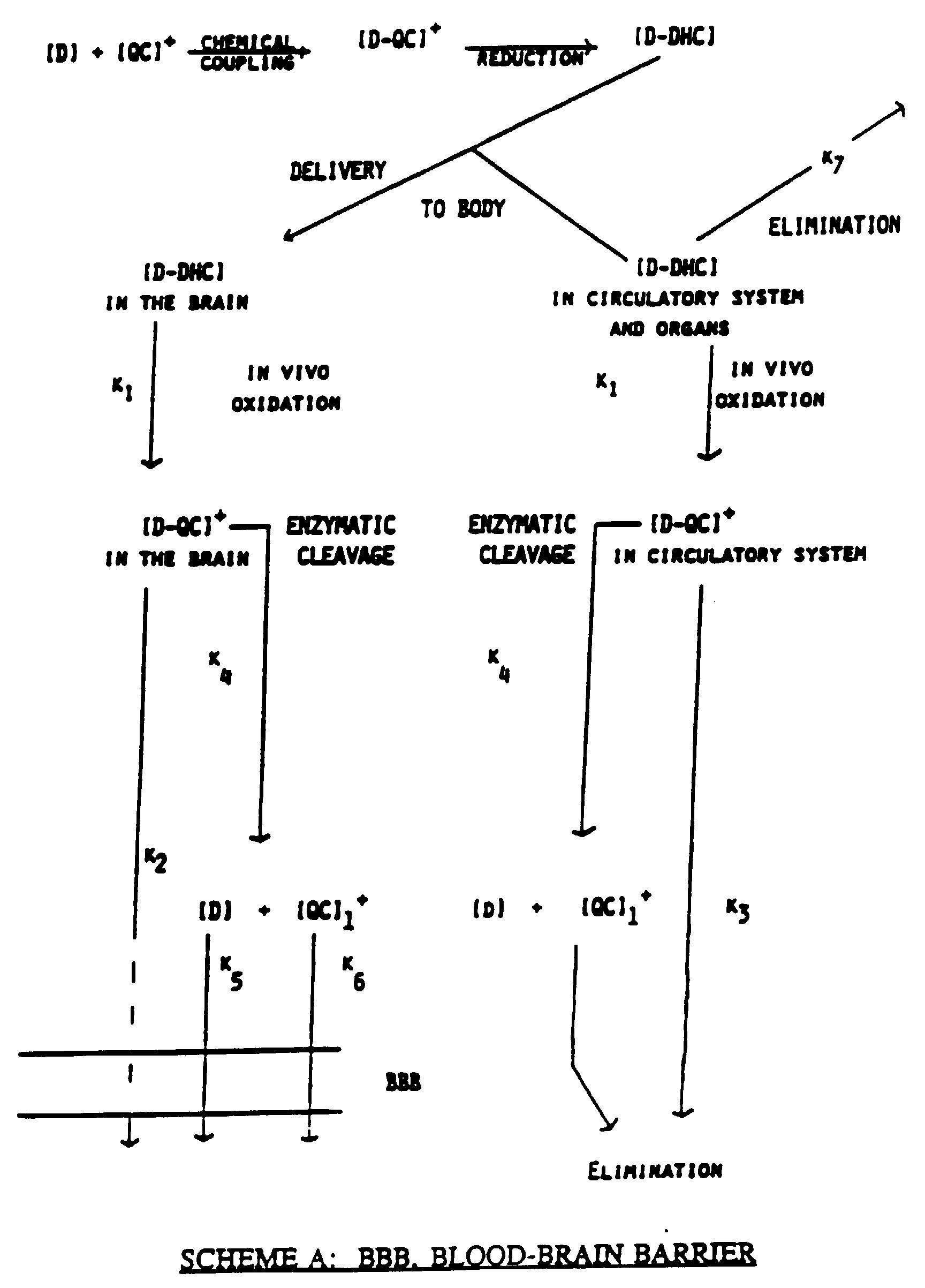 Diagram Of the Brain Simple Unique Ep B1 Brain Enhanced