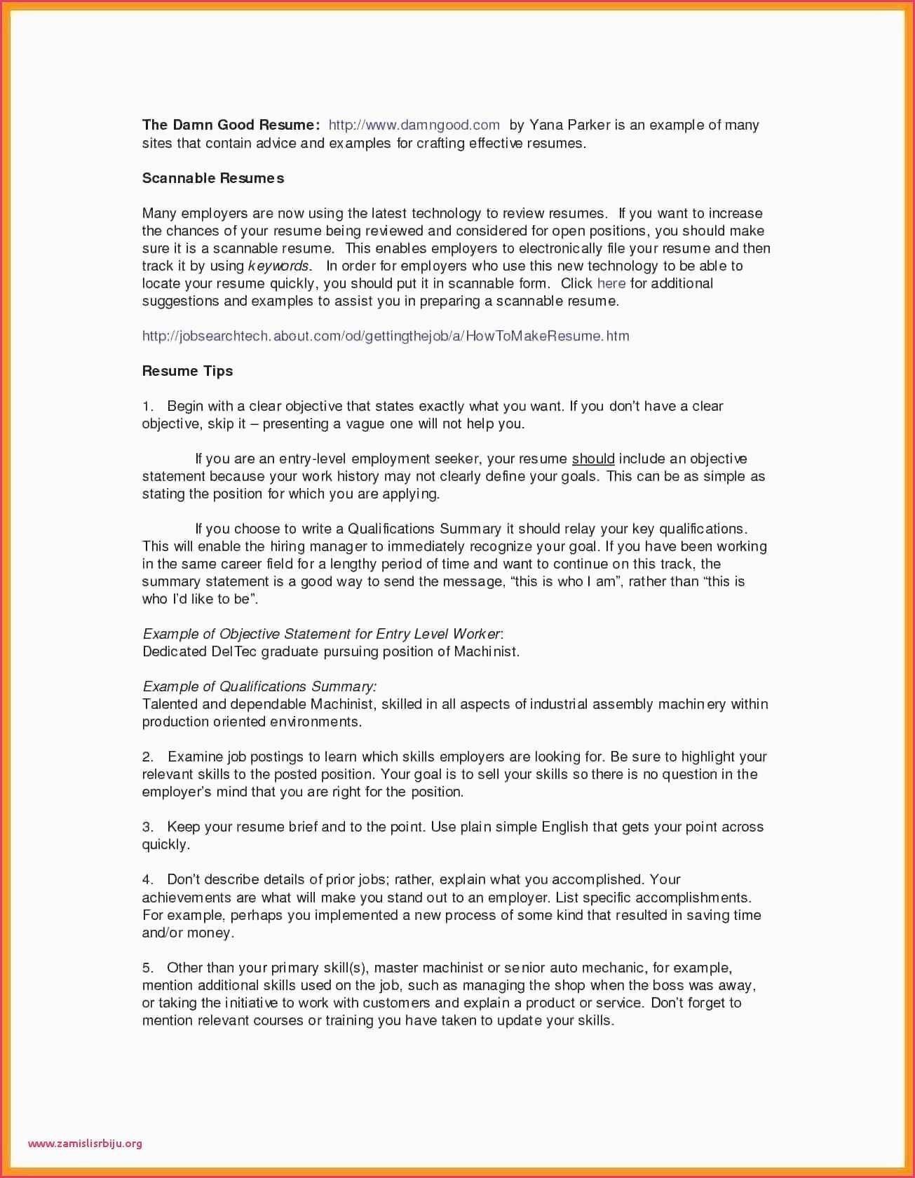 Cv In English Examples Pdf Lo Mejor De Curriculum Vitae Sample For