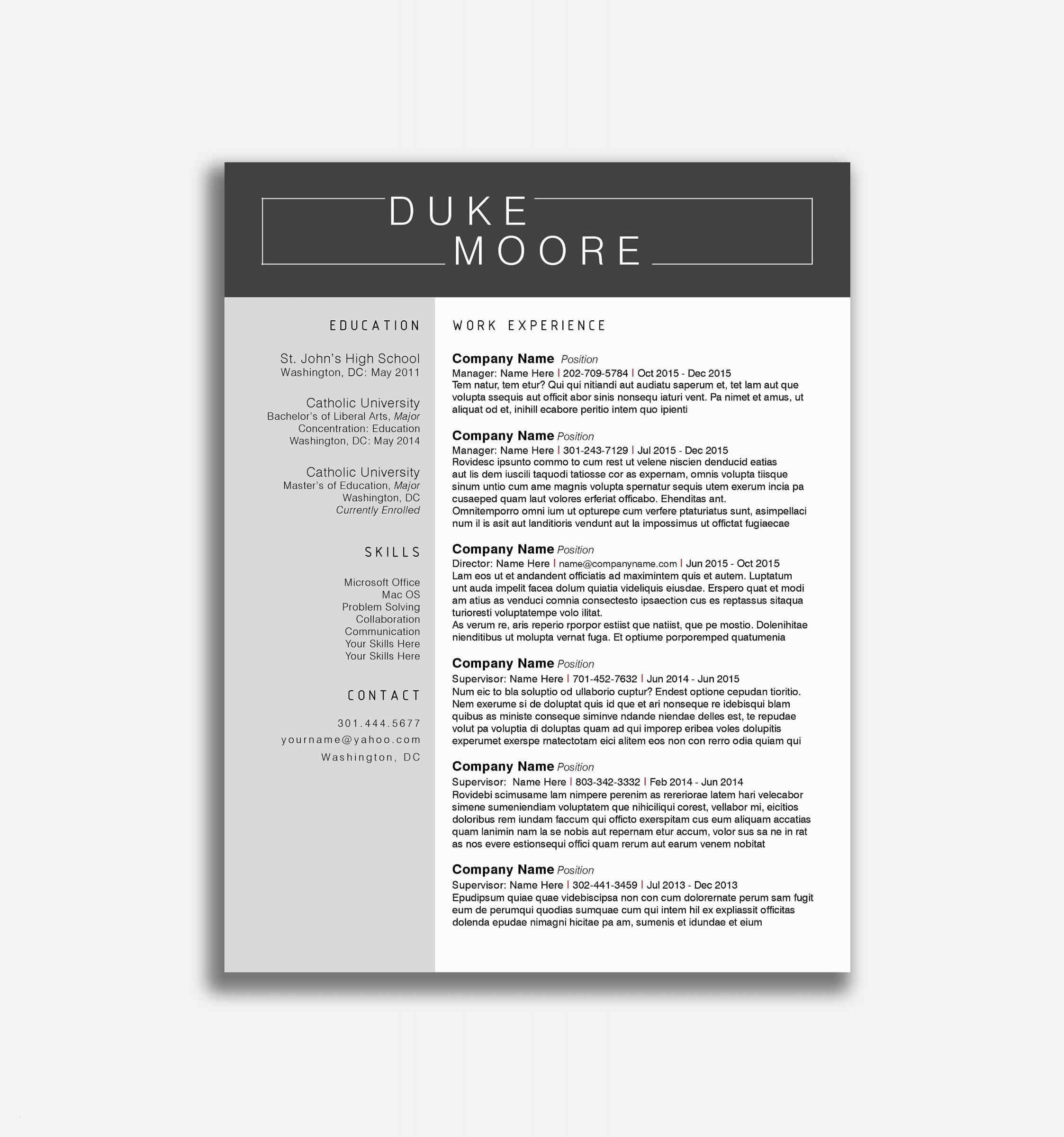 Cv Template Free Online Lujo Resume Template Free Word