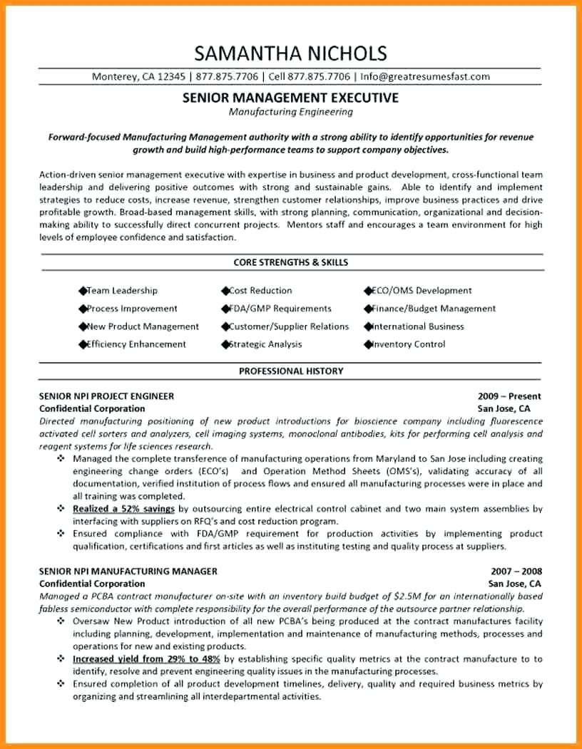 Engineering Manager Cv Examples Uk Lujo Project Manager Cv Example