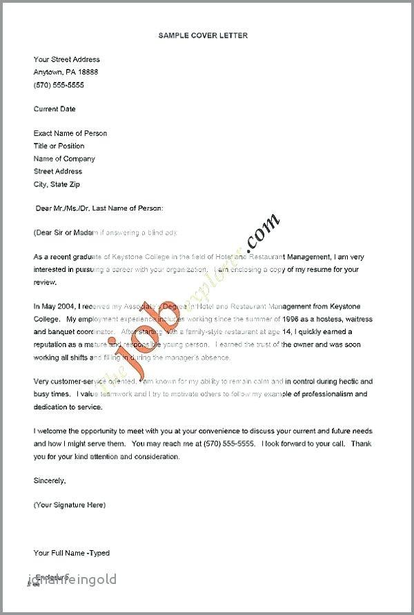 Hospitality Management Cv Examples Elegante Hospitality Resume