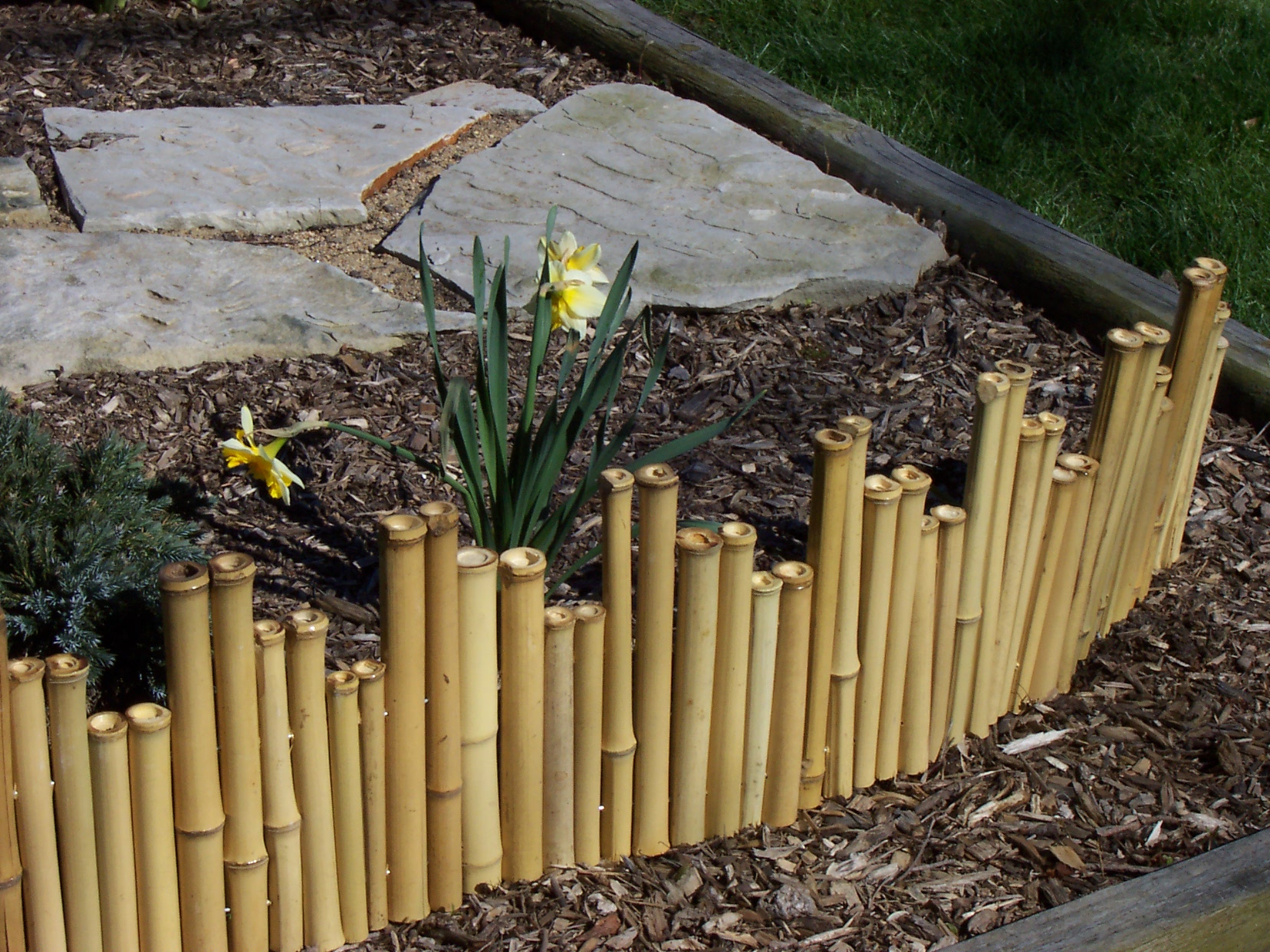 Diy Bamboo Fence Roll Home Design Ideas in sizing 1656 X 1242