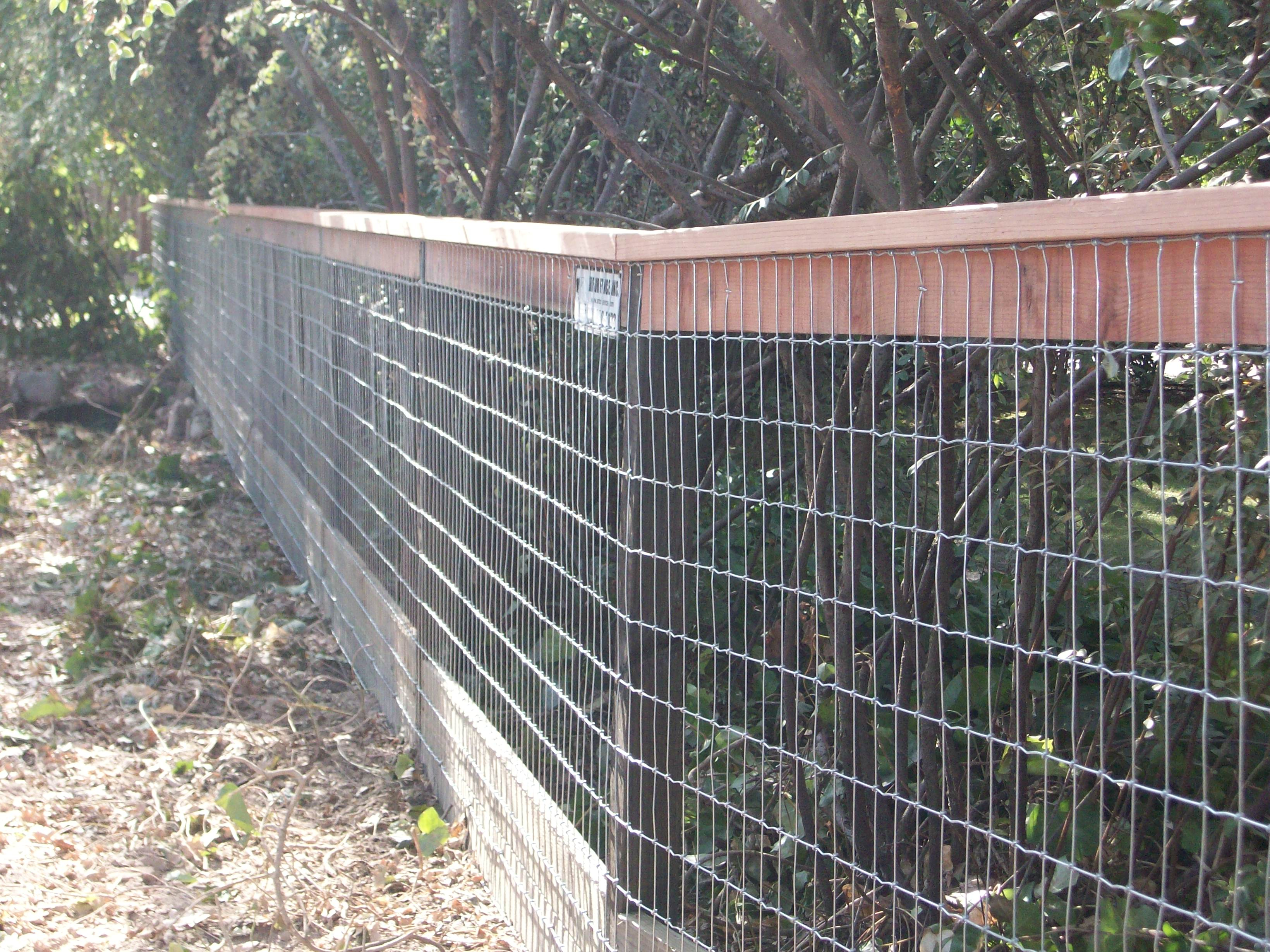 Fence Wire Fencing So Many Kinds Wonderful Electric Tape Fence I throughout size 3280 X 2460