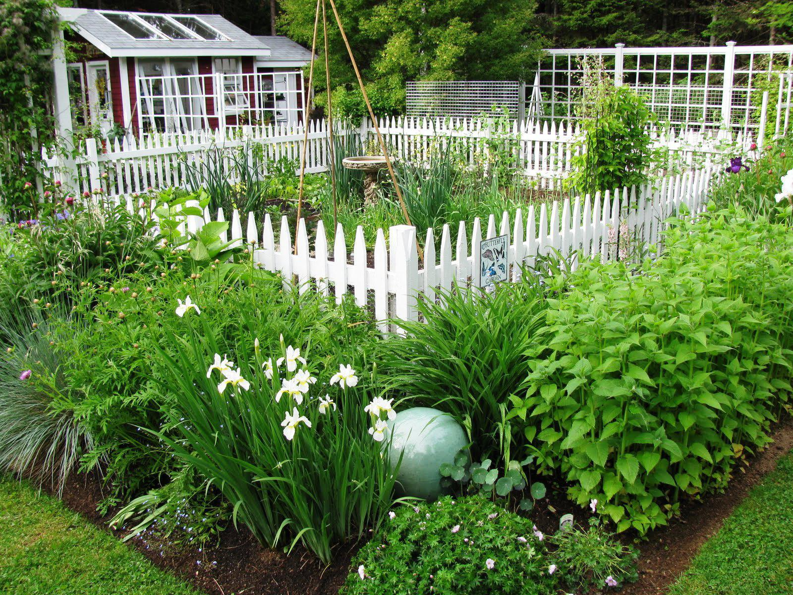 Fencing Ideas For Vegetable Gardens Useful Garden Fence To Protect with proportions 1600 X 1200