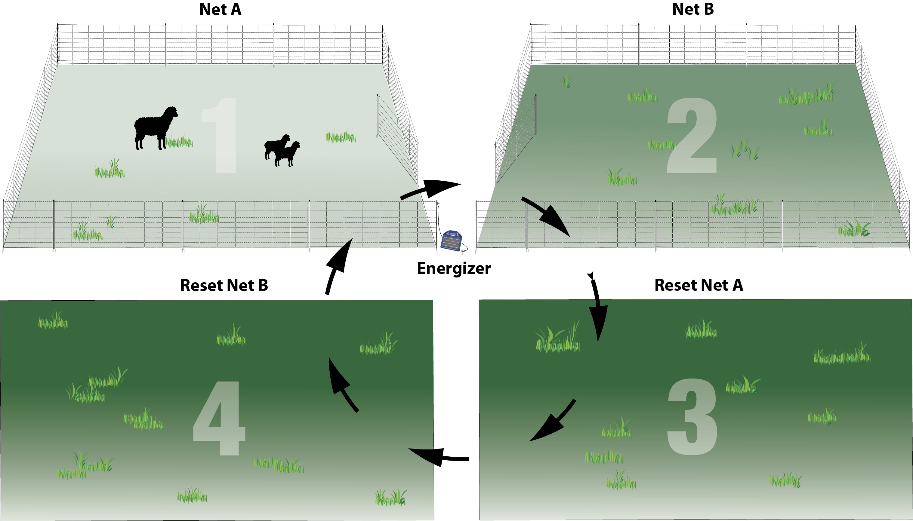 Practical Pasture Configurations For Rotational Grazing regarding measurements 3035 X 1733